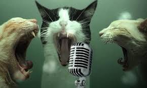 Canzoni facili da cantare in italiano ed inglese, per principianti e bambini