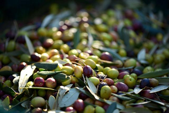 Frutta con la O: ecco la più usata in Italia e nel mondo