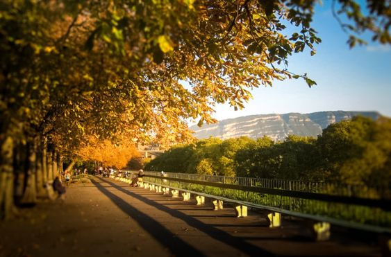 Ginevra: dove si trova, storia, attrazioni e come arrivare