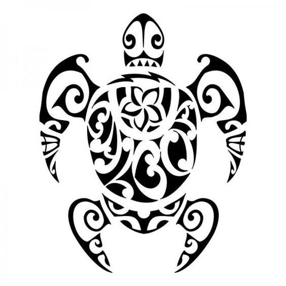 Tartaruga Maori: simboli, significato e descrizione